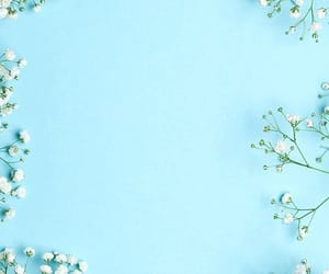 wallpaper, flowers, and blue image