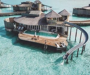 ocean, beach, and Maldives image
