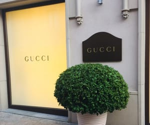 Barcelona, fashion, and gucci image