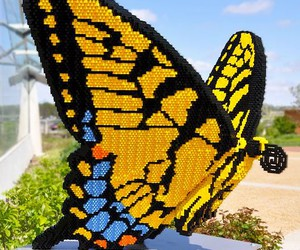 butterfly, lego, and garden image
