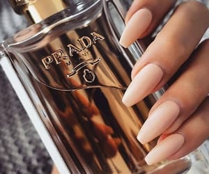 nails, perfume, and Prada image