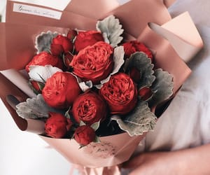 bouquet, flowers, and nature image