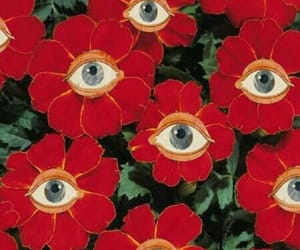 flowers, eyes, and red image