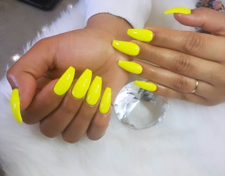 beauty, bright, and claws image