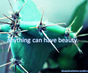 anything, thorns, and flowers image