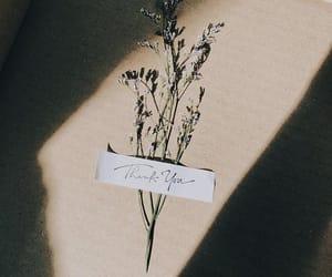 Image by auri