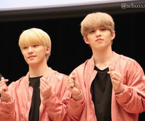 Chan, dino, and seungkwan image