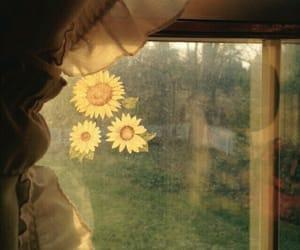 vintage, window, and yellow image