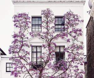 architecture, lilac, and pale image