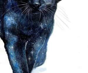 Animales, animals, and arte image