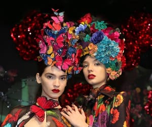 beautiful, butterflies, and Couture image