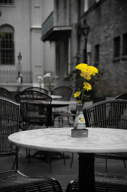yellow, b&w, and flowers image