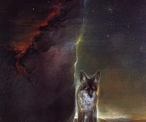 book illustration, starry night, and wolf image