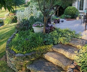 garden, beautiful, and home image