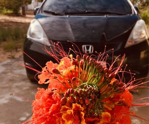 car, flowes, and tumblr image