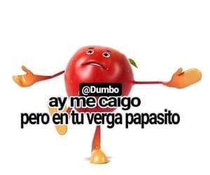 meme, reaccion, and frutas groseras image