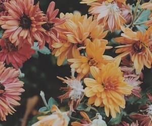 - Spring vibes -