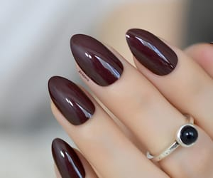 burgundy almond nails image