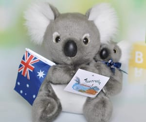 koalas, toy, and love them image