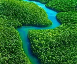 nature, river, and Amazon image