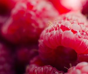 raspberry and pink image