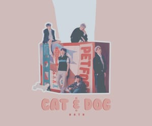 cat, dog, and kpop image