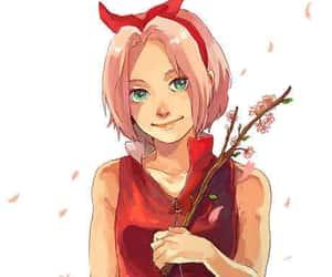 sakura, sakura haruno, and sakura naruto image
