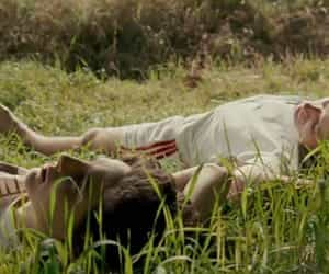 article, films, and call me by your name image