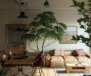 interior and interior design image