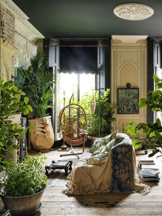 Lovely Indoor Jungle Ideas Shared By Sna Ratiani