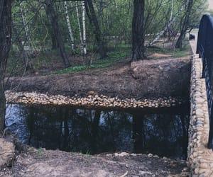 beautiful, river, and bridge image