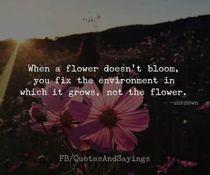 aesthetic, flowers, and quote image