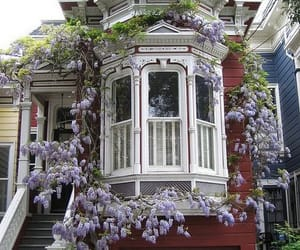 home and wisteria image