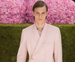 Christian Dior, dior homme, and dior image