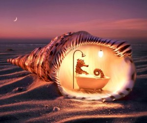 beach, seahorse, and shell image
