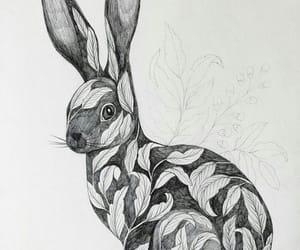 art, conejo, and dibujo image