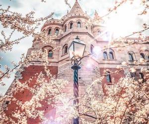 breathtaking, budapest, and flowers image