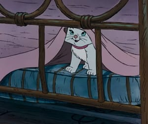 cat, classic, and disney image