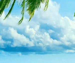 beach, iphone, and ocean image