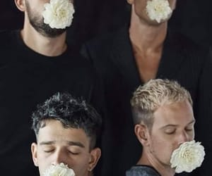 flowers and the 1975 image