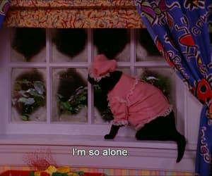 cat, alone, and salem image