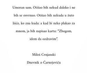 citat, milos crnjanski, and citati image
