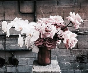 aesthetic, bouquet, and brown image