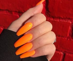 nails, neon, and claws image