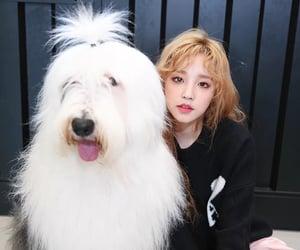 jeon soyeon, seo soojin, and cho miyeon image