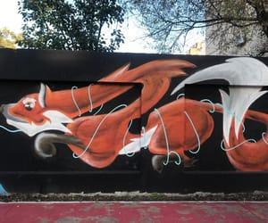 adventure, creative, and fox image