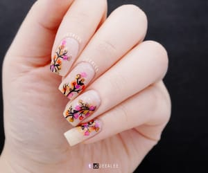 beauty, fall, and floral image
