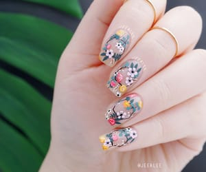 beauty, floral, and nail image
