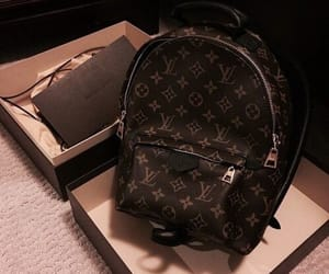bag, Louis Vuitton, and LV image