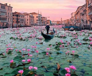 venice, flowers, and italy image